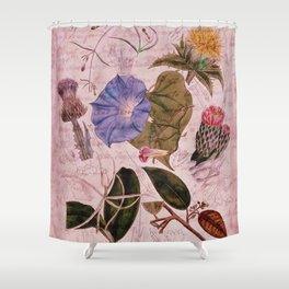 Botanical Study #4, Vintage Botanical Illustration Collage Art Shower Curtain