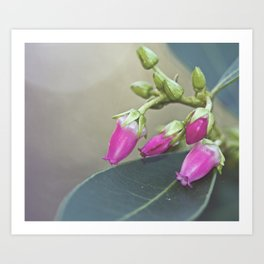 Tiny Pink Art Print