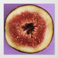 fig Canvas Prints featuring fig by Jenny Goldring