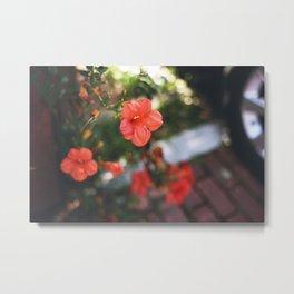 Neighborhood Flowers Metal Print