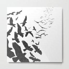 Flock of Birds Metal Print