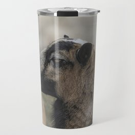 Barbados Blackbelly Sheep Profile Travel Mug
