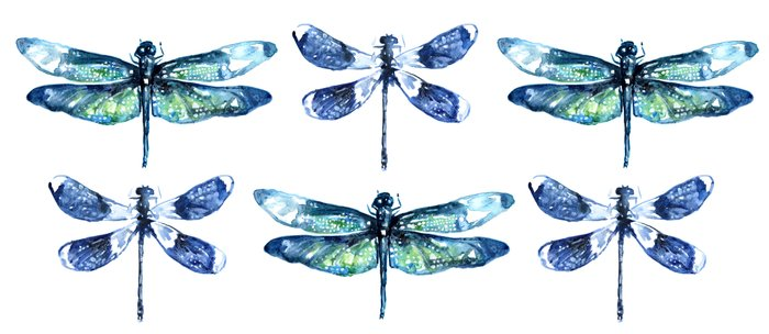 Dragonfly Wings Coffee Mug