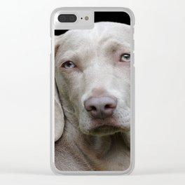 Weimaraner Dog Clear iPhone Case