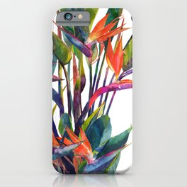 The bird of paradise iPhone Case