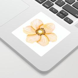 One Orange Flower Sticker
