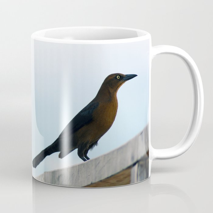 Bird collection _ 01 Coffee Mug