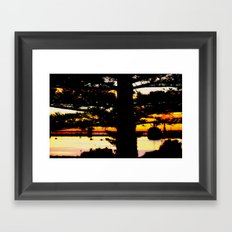 Through the Norfolk Pines Framed Art Print