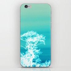 Negative Trees iPhone & iPod Skin