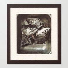 Salmon Heads Canvas Print