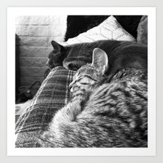 Nap Time... Art Print