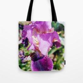 Purple Striped Bearded Iris Tote Bag