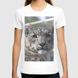 Snow Leopard Stare T-shirt