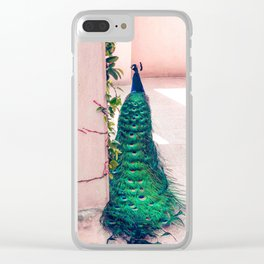 The Handsome Peacock Clear iPhone Case