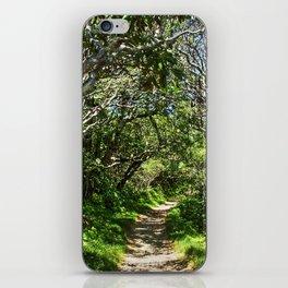Craggy Gardens Walkway iPhone Skin