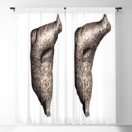 Grey seal Blackout Curtain
