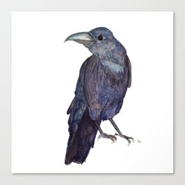 Raven is watching Canvas Print
