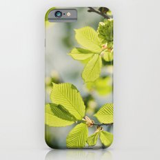Fresh Spring Leaves iPhone 6s Slim Case