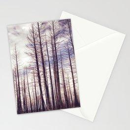 Highland Ponderosas Stationery Cards