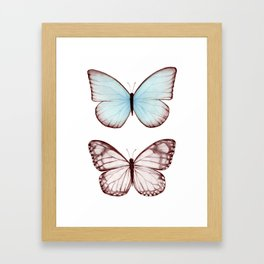 Butterfly Collection II Framed Art Print