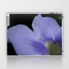 Catching raindrops Laptop & iPad Skin