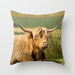 Handlebar Horns Throw Pillow