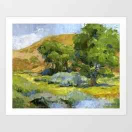 Shade of The Cottonwoods Art Print