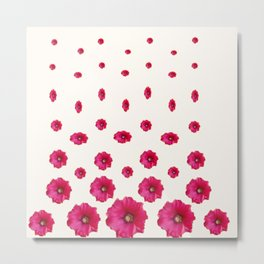 WHITE DOUBLE CERISE HOLLYHOCK FLOWERS GARDEN Metal Print