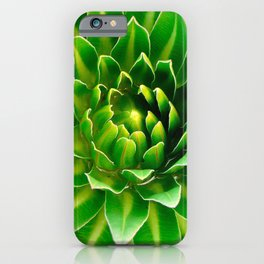Giant Lobelia iPhone Case