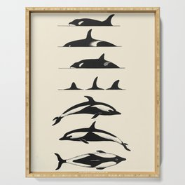 Vintage Scientific Illustration Of Killer Whales Orcas Serving Tray