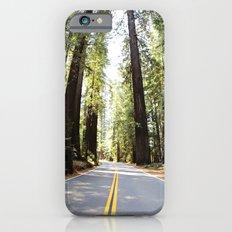 seek adventure- California redwoods Slim Case iPhone 6s