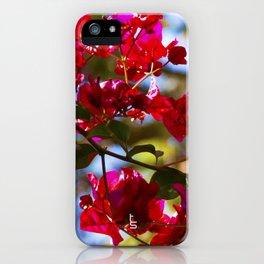 Bougainvillea I iPhone Case