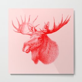 Moose red Metal Print