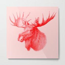 Moose red Metal Print