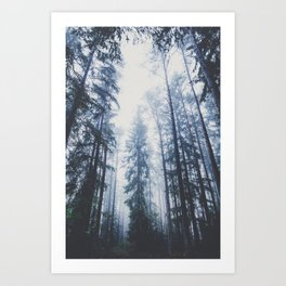 The mighty pines Art Print