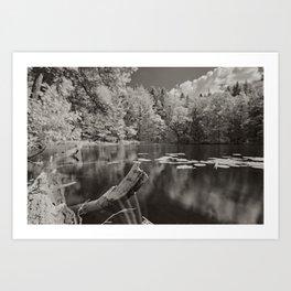 Infrared lake Art Print
