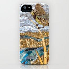 Jamestown, North Dakota iPhone Case