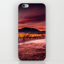 Ripe and Full (Napa Valley; California) iPhone Skin