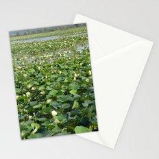 Amana Lilly Pond Stationery Cards