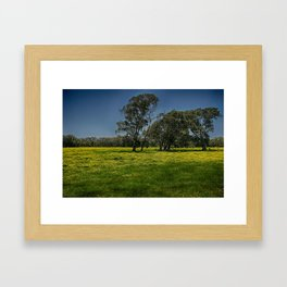Spring Fields Framed Art Print
