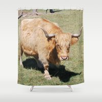 bull Shower Curtains featuring Bull by Sarah Shanely Photography