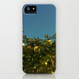 Don't Sit Under the Apple Tree iPhone Case