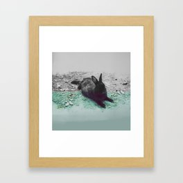 Blue Rabbit Framed Art Print