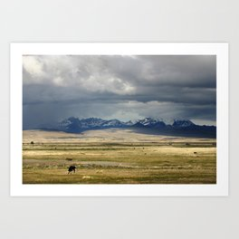 Altiplano, Bolivia Art Print