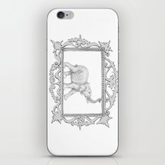grey frame with elephant iPhone & iPod Skin