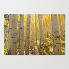 Good Vibes in The Forest Canvas Print