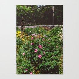 Riverside Park Canvas Print
