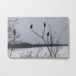 the loneliness of winter • nature photography Metal Print