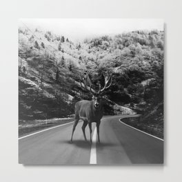 Deer Walker Road Metal Print