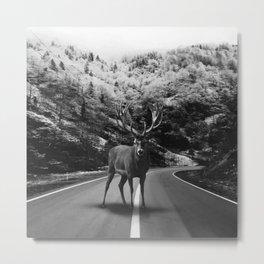Deer Walker Road Metal Print